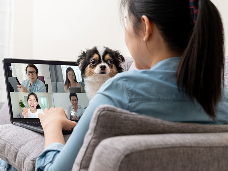 Person on video call with dog interruption.